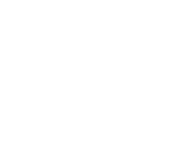 The Nutrition Detectives